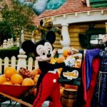 4 frequently asked questions for Disney world trip planning